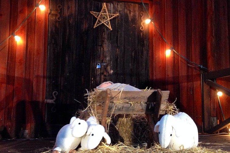 Jouluretki seurasaareen